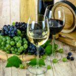 hvidvin
