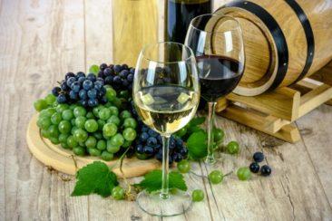 Forkæl dig selv og dine gæster med en kold hvidvin til sommermiddagen